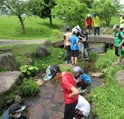 川で水遊びをする児童達の写真